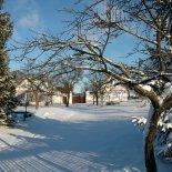 Vetrov_in_de_winter